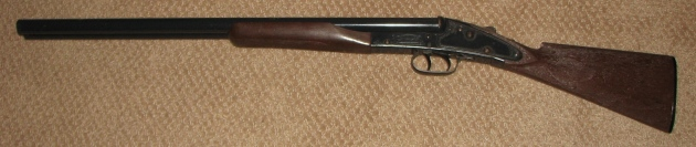 wanted daisy model